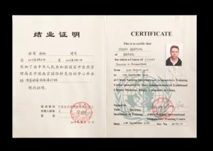 Aperfeiçoamento em Acupuntura Nanjing, China 2015